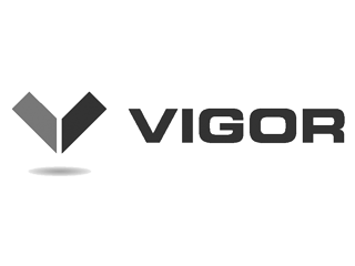 vigor, our clients, industries, users, ship building